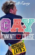 Gay Community College (Ziall/Lirry) by TheToothFairy94