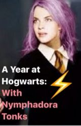 A Year at Hogwarts with Nymphadora Tonks by MarinaHendren