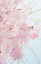 cherry blossom series ♡ bts by ccherryblossom