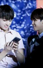 BTS Jikook Story [Completed]  by flufflover21