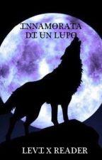 Innamorata di un lupo Levi X Reader by chiara_perna