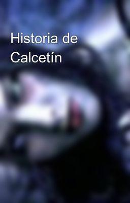Historia de Calcetín