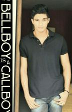 The bellboy is a call boy by JedAnt