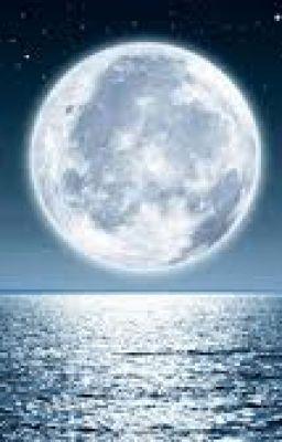 ( 12 chòm sao-Mặt trăng) Tình yêu như ...mặt trăng này vậy