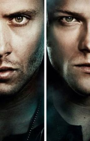 Sam Winchester and Dean Winchester X Reader by ainsley290