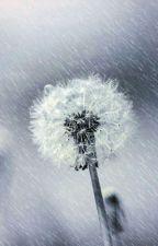 Dandelion by ahn111_