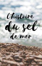 L'histoire du sel de mer by accentdecomplexe
