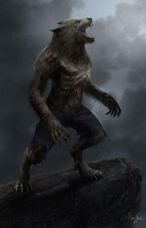 Werewolf Reader x RWBY Harem by Patotohead