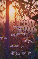 Митина любовь (И. Бунин)  by 20_AsyA_FoX_02