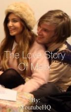 The Love Story Of Melix (Pewdiepie Fan Fic) by YoutubeHQ