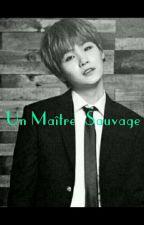 Un Maître Sauvage - Yoonmin by Tatyhope