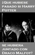¿Que hubiese pasado si Harry Potter se hubiera juntado con Draco Malfoy? by TheShadowKira