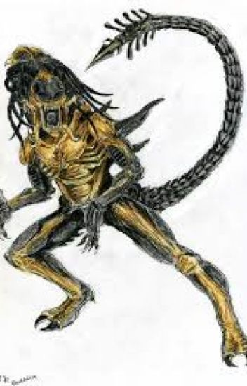 By Photo Congress || Predalien Fanfiction