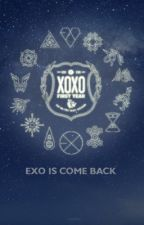 [ON PAUSE] We are one \\EXO x Reader// {ft. A few other K-Pop groups ;)} by loarose17