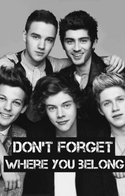 Don't forget where you belong (One direction fanfic)