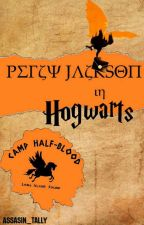 Percy Jackson in Hogwarts by wildlife3