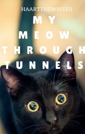 My Meow through Tunnels by HaartTheWriter