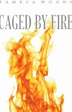 SpinOff Works: Caged by Fire by TamecaWoods