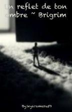 Un reflet de ton ombre ~ Brigrim by kyarameru59