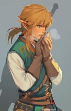 Breathtaking (LozBOTW Link X Reader)  by __skaia__