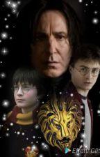 Point of View- La testa di Leone- Fanfiction Harry Potter e Severus Piton by LadyPitonFrancy