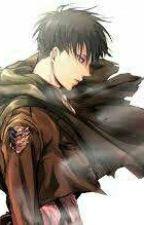 Solo noi, il resto non conta LevixReader by shingeki_no_hp