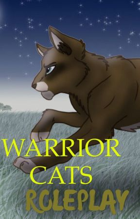 ; WARRIOR CATS ; by StalkingPantherCat