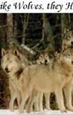 werewolf love story by Babygirl959