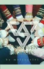 SEVENTEEN Profiles, Facts, etc. [UPDATED] by serenitycarat_