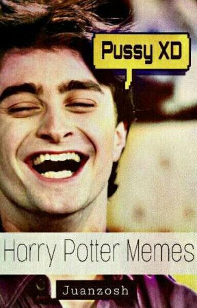 Harry Potter And The Memes by FundashiBoy133