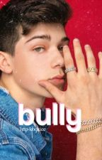 ✓ | Bully by J.M.B by tvd_katherinee