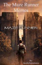 The Maze Runner Memes by JacobxSartoriusxx