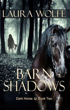 Barn Shadows by Laura Wolfe by FireIceYA