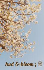 bud & bloom ; ❁ by winderfulin