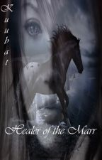 Healer of the Marr (Lesbian Story) Ruler of the Marr Trilogy Book 1 by Kuubat
