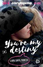 You're my destiny ~ HOPEMIN by JileryHopemin