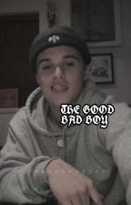 THE GOOD BAD BOY→BWS FANFIC COMPLETE by warybradley