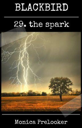 BLACKBIRD 29 - the spark by MonicaPrelooker