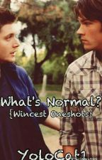 What's Normal?///Wincest Oneshots by YoloCat1