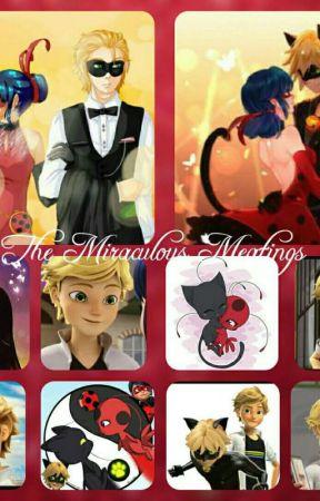 The Miraculous by MiChatulousXD