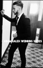 Adam Saleh Wedding Series by diyya_