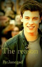 The reason (Shawn Mendes) by Janegad