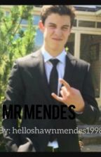 Mr mendes // by Helloshawnmendes1998