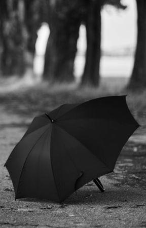 Paraguas  by CanutoRockero
