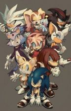 Sonic RP {Individual Role Play} by SweetKitten313