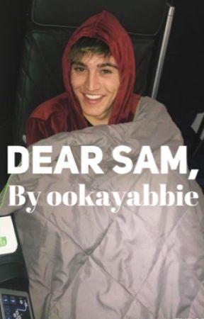 Dear Sam  by ookayabbie