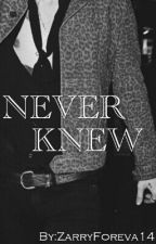 Never Knew [Zarry AU] by ZarryForeva14