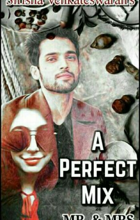 A Perfect Mix Mr&Mrs  by Sirishavenkateswaran
