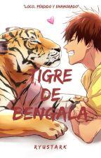 Tigre de Bengala (AoKaga) by RyuStark