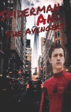 Spiderman and The Avengers [ DISCONTINUED ] by alavia12
